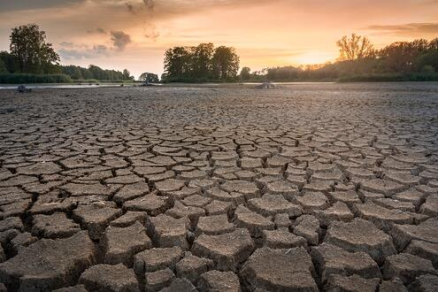 Drought conditions on a property