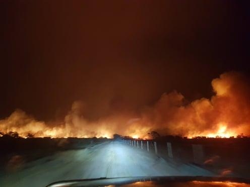 bushfire in the immediate distance