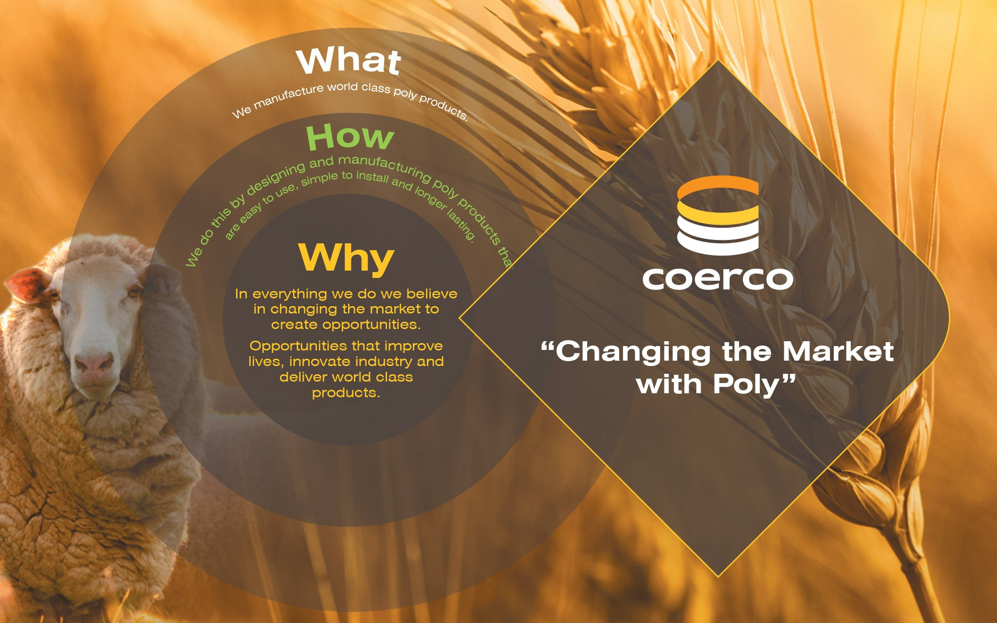 Coerco Why We Do What We Do